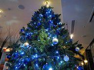 Grand-Famille CHEZ MATSUO ブルーテイストのクリスマスツリー.jpg